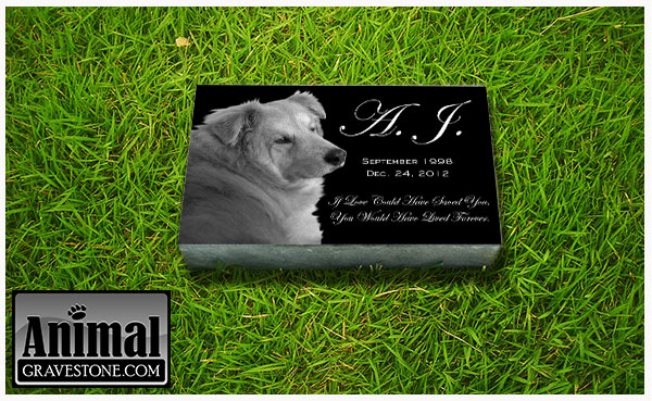 "6""x10""x2"" Granite Pet Memorial Layout 1"